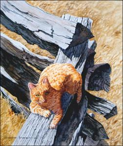 Country Cat: original watercolor painting of barn cat by artist Gerry McKeown