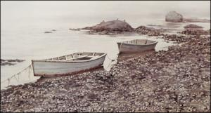 Solitude - print of Maine coast by Geraldine McKeown