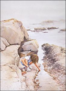Tide Pool Treasures : Arts for the Parks Exhibition watercolor by Gerry McKeown